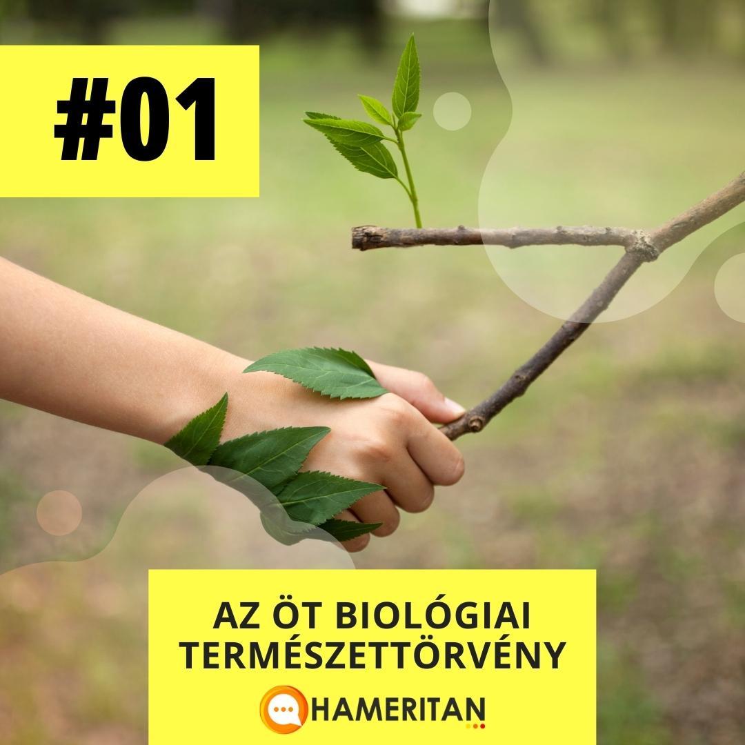 Germán Gyógytudomány online tanfolyam - az öt biológiai természettörvény