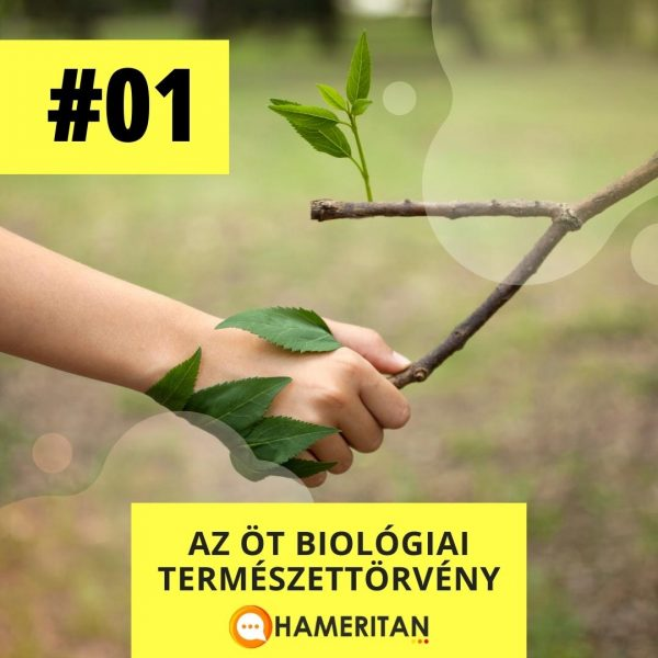 Hameritan - Török Gabriella - Germán Gyógytudomány online tanfolyam - az öt biológiai természettörvény