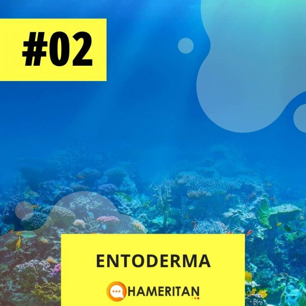 Hameritan - Török Gabriella - Germán Gyógytudomány online tanfolyam - entoderma